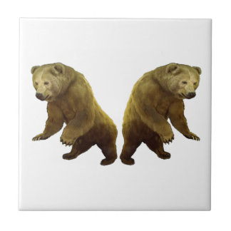 Natures Gifts Ceramic Tile