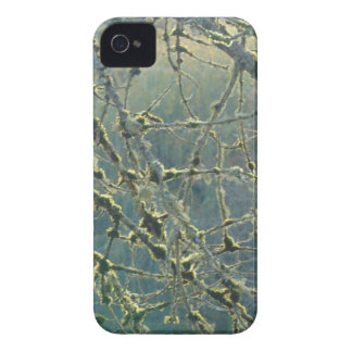 Nature's Lace iPhone 4 Cover