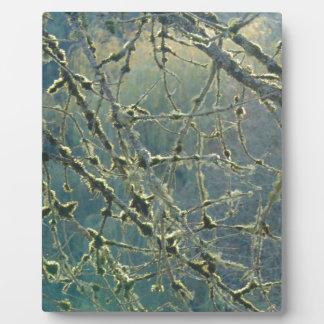 Nature's Lace Plaque