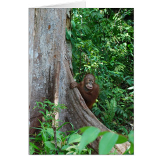Nature's Original Tree Hugger in Rain Forest Card
