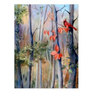 Natures Path Cardinal Postcard