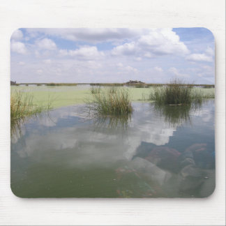 Nature's Reflections Mouse Pad