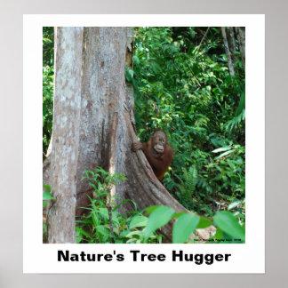 Nature's Tree Hugger Poster