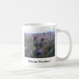 Natures Wonders ! Basic White Mug