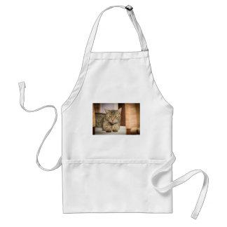 Naughty Cat Standard Apron