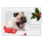 Naughty Christmas pug Card
