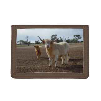 Naughty Highland Cows, Trifold Wallet