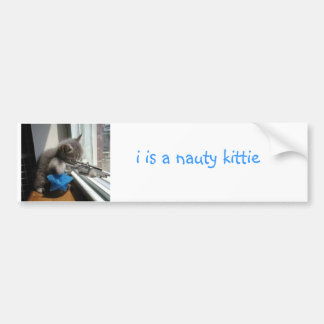 Naughty Kitten Bumper Sticker