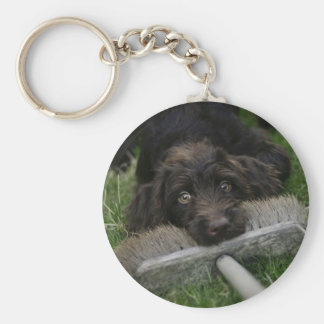 Naughty Labradoodle Key Ring