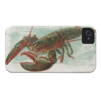 Nautical steampink vintage lobster book drawing iPhone 4 Case-Mate case