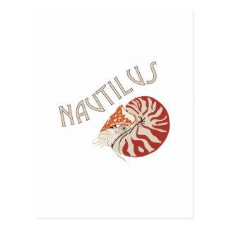 Nautilus Animal Postcard