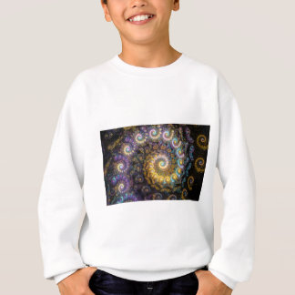Nautilus fractal beauty sweatshirt