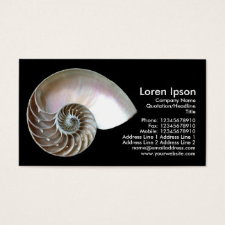 Nautilus Shell - Black Business Card