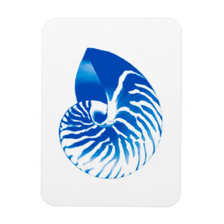 Nautilus shell - cobalt blue and white magnet