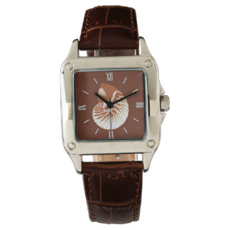 Nautilus shell - cocoa brown and white watch