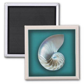 Nautilus shell magnet