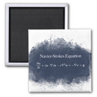 Navier Stokes Equation Math & Science Magnet