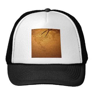 Navigation instrument, chart hat