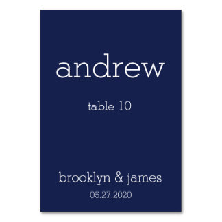 Navy Blue Modern Wedding Place Cards Table Cards
