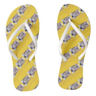 Navy cat beach sandal