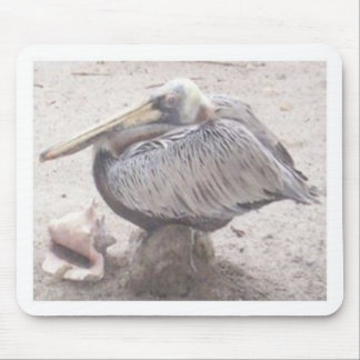 Neat Pelican with Shell Mouse Pad