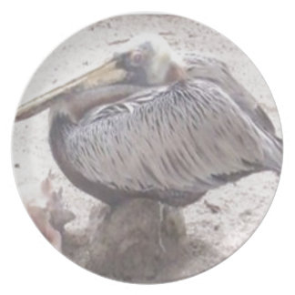 Neat Pelican with Shell Plate