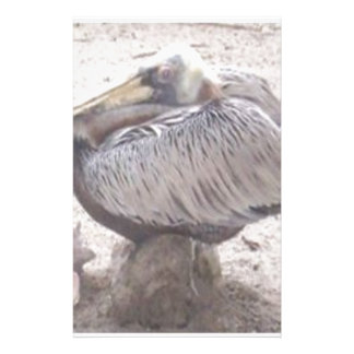 Neat Pelican with Shell Stationery