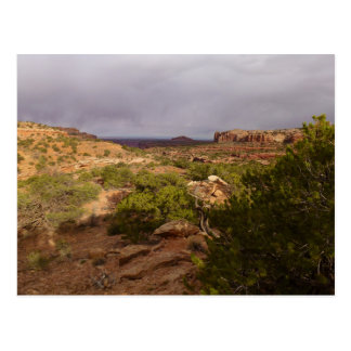 Neck Springs Trail at Canyonlands National Park Postcard