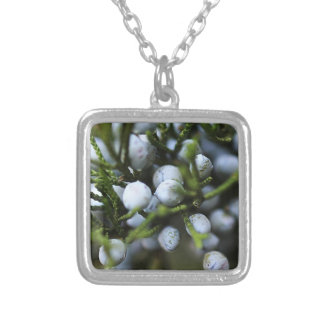 Necklace with Juniper Berries
