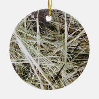 needle in a haystack 2 SIDED ornament