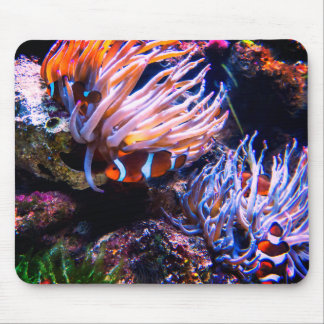 Neon Colors Clown Fishes Mouse Pad