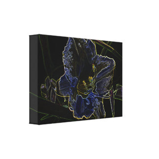 Neon Glow Daylily Flower with Glowing Edges Gallery Wrap Canvas