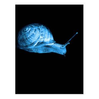 Neon snail postcard