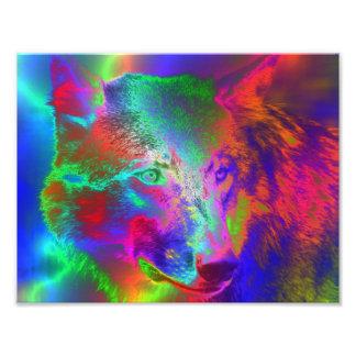 NEON wolf Photo