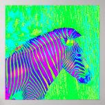 neon zebra - green,blue and purple retro posters