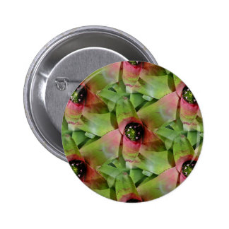 Neoregelia Bromeliad Tossed Salad Pinback Button