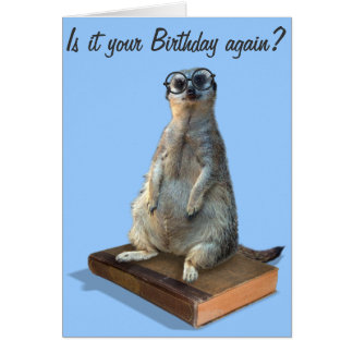 Nerdy Meerkat, hipster, goofy, librarian, funny Card