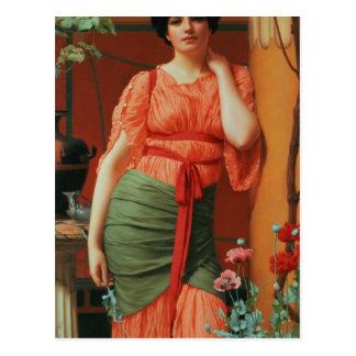 Nerissa, 1906 postcard