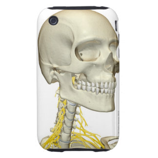 Nerves of the Neck iPhone 3 Tough Case