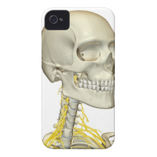 Nerves of the Neck iPhone 4 Case