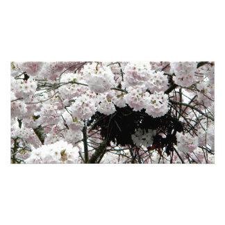 Nest Customized Photo Card