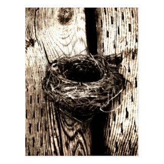 Nest Postcard