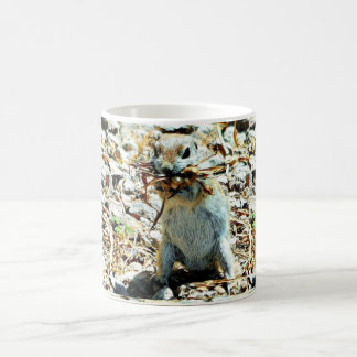 Nesting Ground Squirrel Coffee Mug