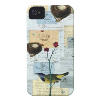 Nests and small birds iPhone 4 case