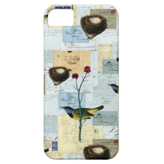 Nests and small birds iPhone 5 case