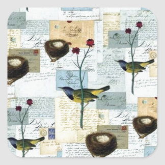 Nests and small birds - square Sticker