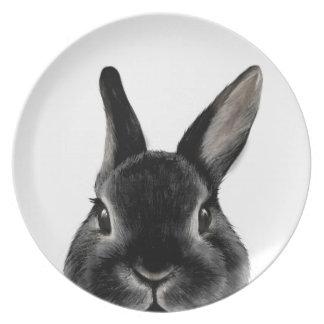 Netherland Dwarf rabbit Black, Original by miart Plate