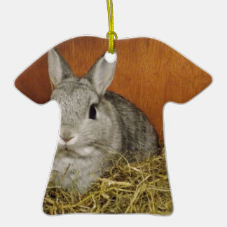 Netherland Dwarf Rabbit Christmas Tree Ornaments