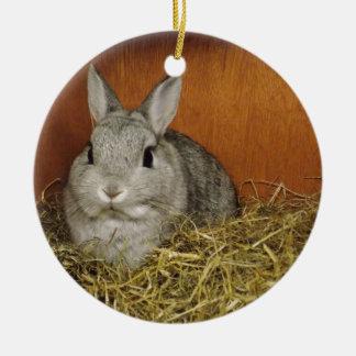 Netherland Dwarf Rabbit Ornament