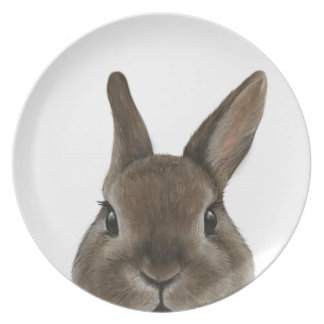 Netherland Dwarf rabbit, Original by miart Plate